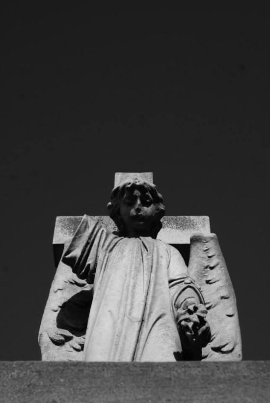 Luis Roco Cementerio 9