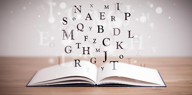 Resultado de imagen para diccionario